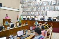 Câmara aprova 3 projetos e debate sujeira de pombos no terminal urbano